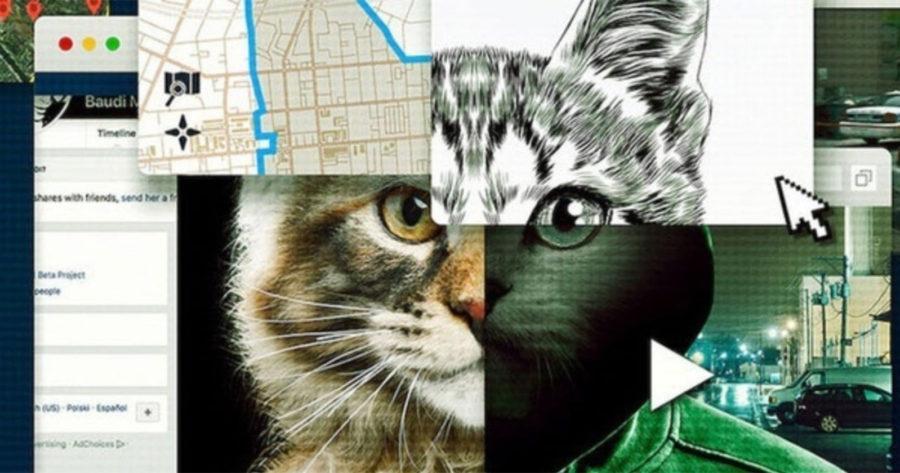 Collage de gatos e imágenes digitales, de la docuserie Don't F**k with Cats.